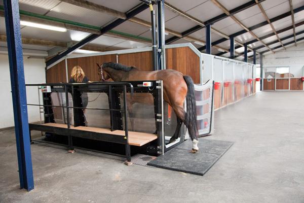 Aquatrainer RND Sporthorses