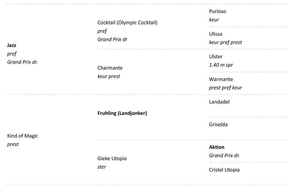 RND-sporthorses-sportpaarden-dressuur