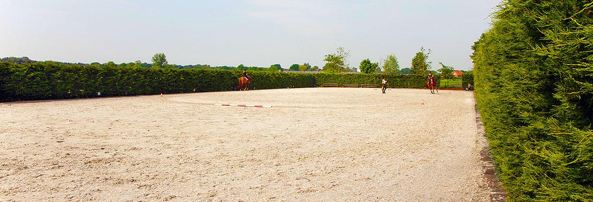 sportpaarden-sporthorses-rnd-Piste_01